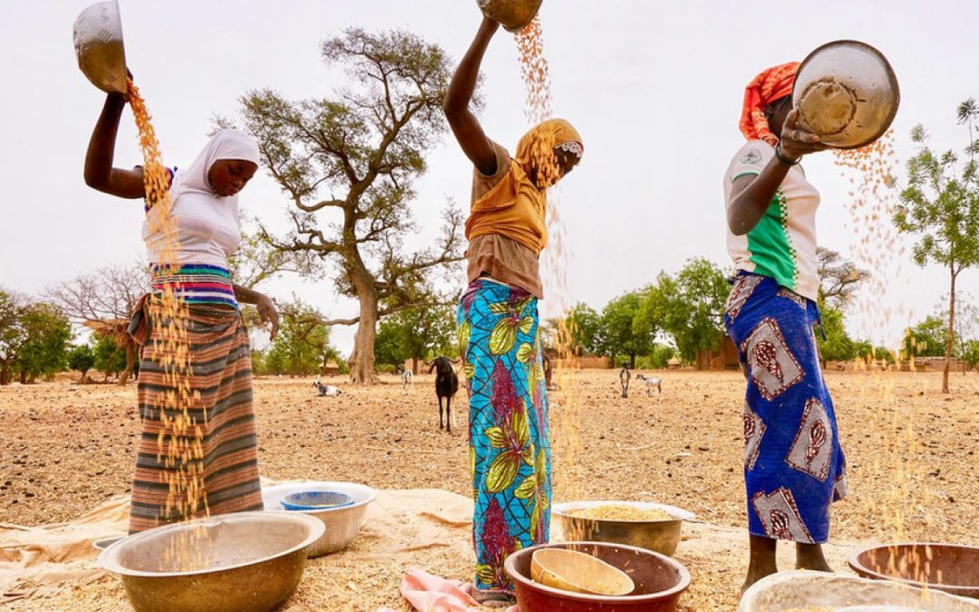 Agriculture: Food Insecurity and Famine Alarm Bells