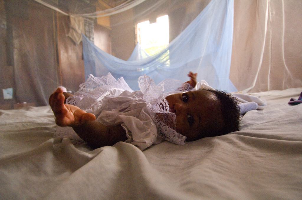 Baby sleeps protected by mosquito net - Photo Family Included