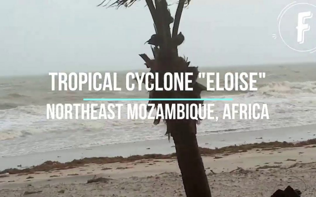 Mozambique: Four Killed in Cyclone Eloise