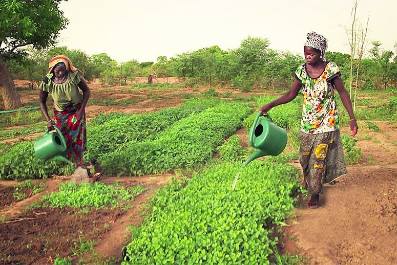 Female Farmers, Key Players in Ending Food Insecurity
