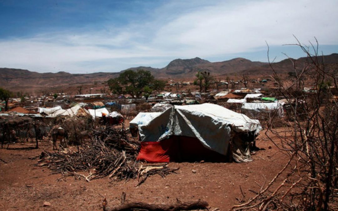 Over 250 Killed in Darfur Clashes - Photo UN News