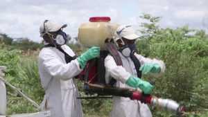 Using Biopesticides Strapped to Back Less Efficient than Aircraft - Photo FAO