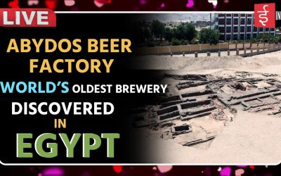 Egypt: World's Oldest Brewery Unearthed