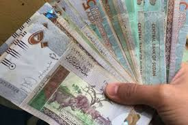 Sudan Sharply Devalues Currency - Photo Internewscast