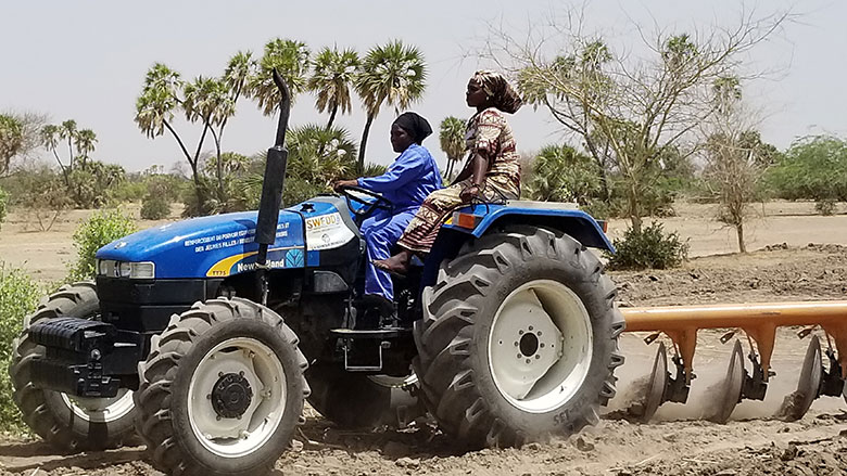Women Plough Fields in Chad - Photo The World Bank Group