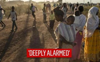 Ethiopia: US Deeply Concerned by Tigray