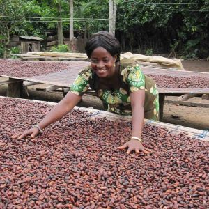 Drying Cocoa Ahead of Transformation ito Chocolate - Photo Serrv