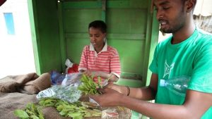 Khat Trade Sale and Consumption - Photo The World Bank Group