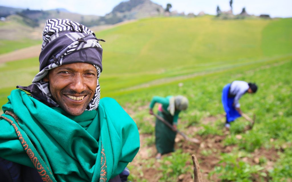 Potato Farmers in the Highlands of South Wollo, Ethiopia - - Photo Concern Worldwide US
