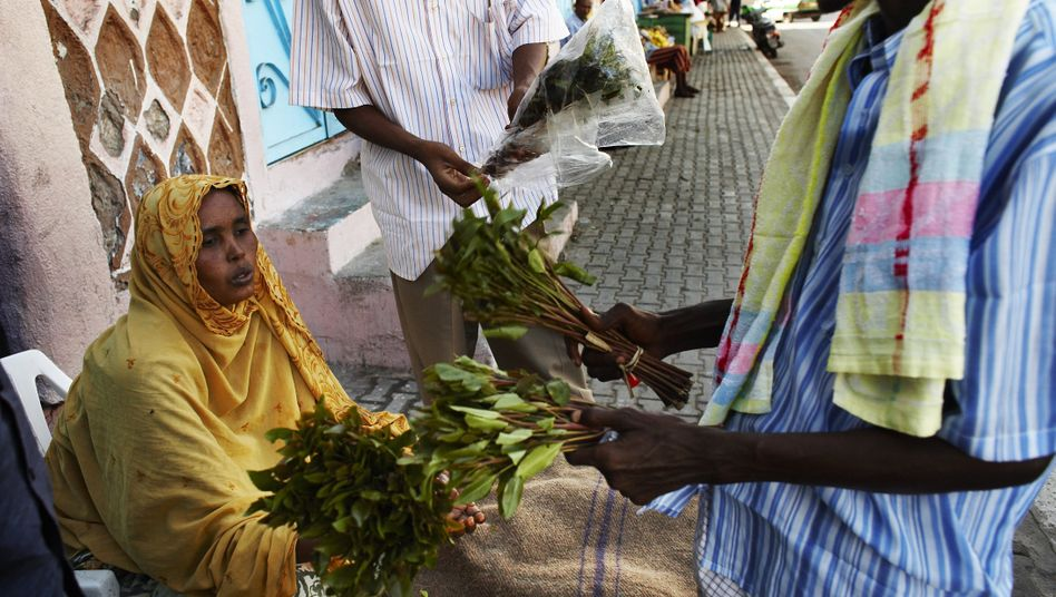 Khat Trade in Djibouti - Photo Carsten Koall via Getty Images