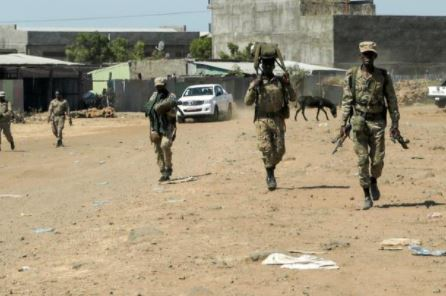 Regional Forces Fighting Each Ohter in Ethiopia's Afar and Somali Regions - Photo The Standard